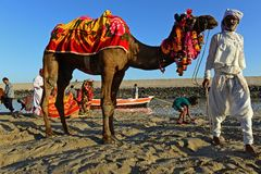 Gujarat Travel Royalty Free Stock Images