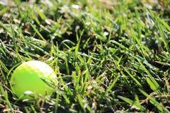 Gul övningsgolfboll Royaltyfria Foton