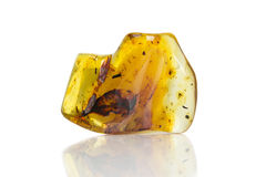 Gul bärnstensfärgad sten med medräknanden Fotografering för Bildbyråer