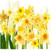 Gul blomma royaltyfri illustrationer