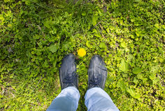 Gul blomma på foten av en man Fotografering för Bildbyråer