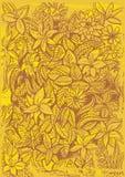 Gul blommabakgrund Arkivbilder