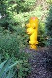 Gul brandpost i mitt av en trädgård Fotografering för Bildbyråer