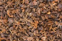 Gul brun krydda Badian med en suddig bakgrund naturlig yttersidatextur royaltyfria bilder