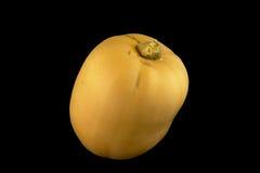 Gul butternutsquash, på svart bakgrund - Cucurbitamoschata Royaltyfri Foto