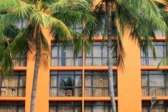 Gul byggnad med stora panorama- fönster och palmträd i förgrunden royaltyfri bild