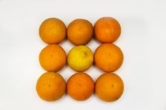 Gul citron bland orange apelsiner Arkivbilder