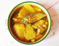 Gul curry med fisken i matbärare royaltyfri bild