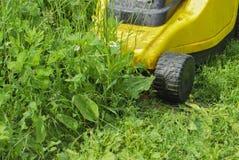 Gul elektrisk gräsklippare i processen av att meja för gräs Arkivbild
