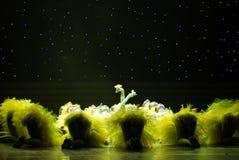 Gul fågelunge-ful ankunge - barndans Arkivbild