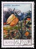 Gul ` för collinaen för Fritillary`-Fritillaria, från serie`en skyddade träd och buske`, circa 1976 Fotografering för Bildbyråer