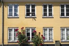 Gul facade Arkivbild