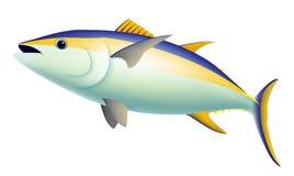 Gul fena Tuna Fish royaltyfri illustrationer