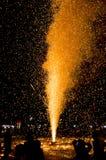 Gul firecracker Arkivfoto