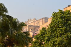 gul fort Royaltyfria Bilder