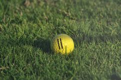 Gul golfboll Royaltyfri Fotografi