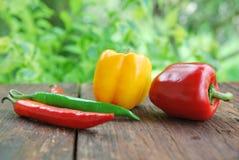 Gul gräsplan för söt peppar som är röd på den wood tabellen Royaltyfri Bild