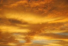 Gul himmelsolnedgång Royaltyfri Fotografi
