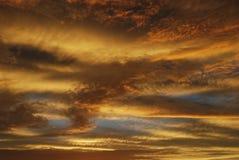 Gul himmelsolnedgång Fotografering för Bildbyråer