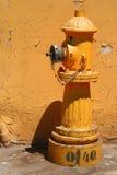 Gul hydrant arkivbilder