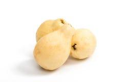 gul isolerad guavafrukt Arkivfoto