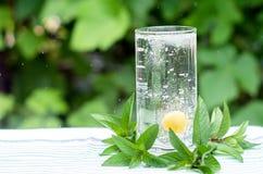 Gul körsbär i ett exponeringsglas med vatten, bubblor Fotografering för Bildbyråer