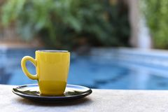Gul kaffeböna vid pölen royaltyfri bild