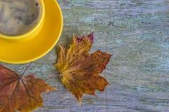 Gul kopp av coffe och torra lönnlöv Royaltyfri Fotografi