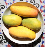 Gul läcker mango Arkivfoto