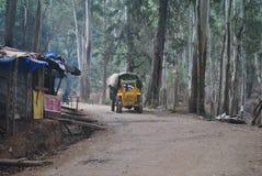 Gul lastbil i skogarna arkivfoto