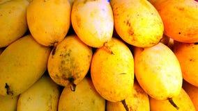 Gul mango Arkivbild