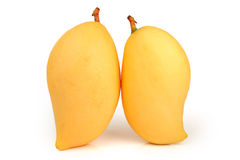 Gul mango Royaltyfri Foto