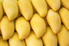 Gul mango på marknad Royaltyfri Bild