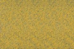 Gul matttextur Royaltyfria Bilder