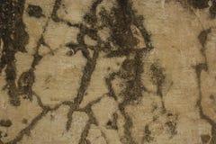 Gul murbruk med svarta penseldrag på väggen Royaltyfri Fotografi