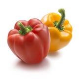 Gul och röd spansk peppar på vit bakgrund Royaltyfri Bild