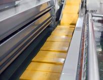 Gul osttillverkninglinje för ostfabrik Royaltyfria Foton