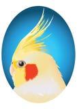 Gul papegoja Vektor Illustrationer