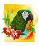 Gul papegoja- och orkidéblomma vektor illustrationer