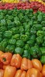 Gul röd gräsplan och orange nya organiska peppar Royaltyfri Foto