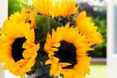 Gul solrosbukett i trädgårds- krus Fotografering för Bildbyråer