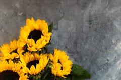 Gul solrosbukett på Grey Background Royaltyfri Bild