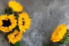 Gul solrosbukett på Grey Background Arkivfoton