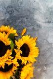 Gul solrosbukett på Grey Background Royaltyfria Foton