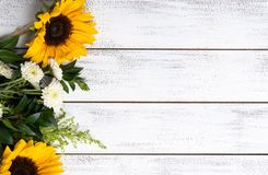 Gul solrosordning på vit träbakgrund med kopieringsutrymme royaltyfria foton