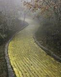 Gul tegelstenväg, bokträdberg, North Carolina Royaltyfri Foto