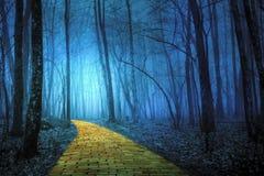 Gul tegelstenväg som leder till och med en spöklik skog fotografering för bildbyråer