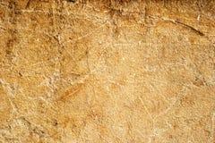 Gul textur för sandstenlimestonevägg Arkivbilder