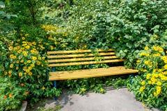 Gul träbänk i parkera i gräsplanen och gulingen trädgårds- f Arkivfoto