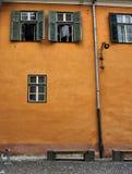Gul vägg med gröna fönster Sibiu Rumänien Arkivbilder